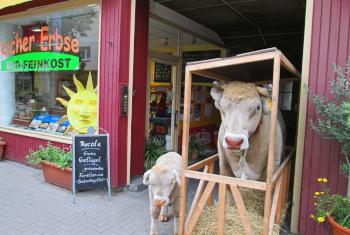Außenansicht des KicherErbse-Ladenseitrag